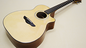 Northwood Guitars MA-80 OMV