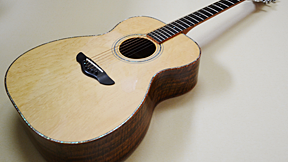 Northwood Guitars WA-80 000