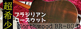 Northwood Guitars BR-80 D