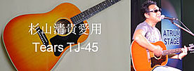 Tears TJ-45 SERIES